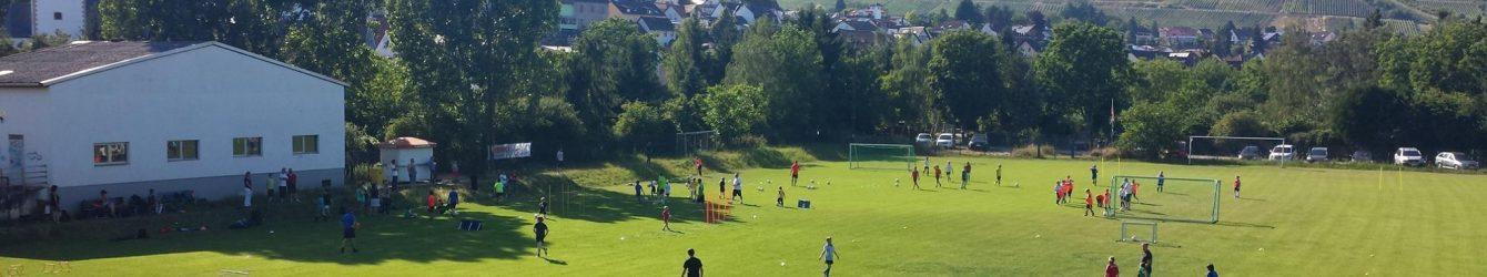 SV BW Münster-Sarmsheim e.V.